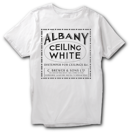A white t-shirt with Albany ceiling white on it
