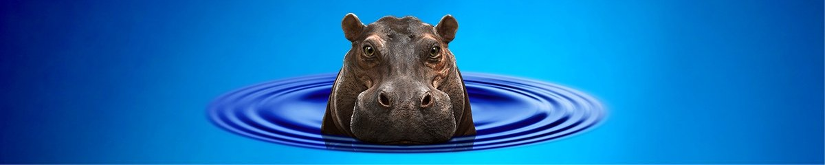 Hippo Large Banner